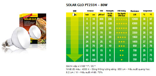 Công suất 80w: 750.000 VND