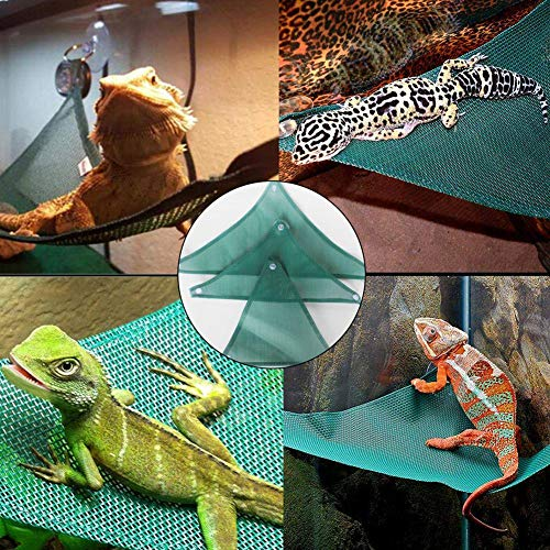 pet-supplies > reptiles-and-amphibians > terrariums-and ...