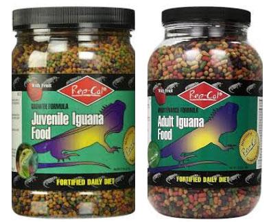 Repcal for Juvenile Iguana - Đồ ăn khô dành cho Rồng Nam Mỹ
