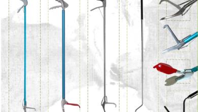 Photo of Cách sử dụng gậy bắt rắn đúng cách