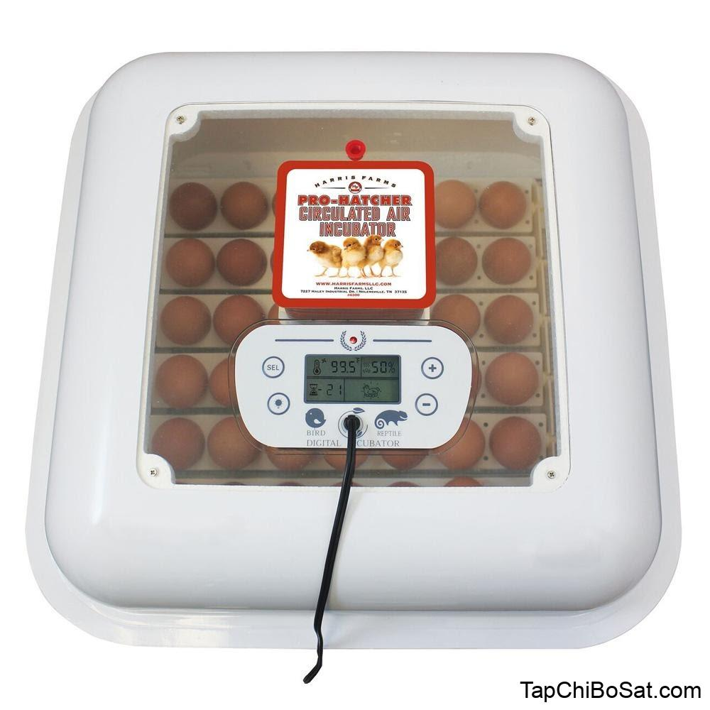 Kết quả hình ảnh cho manual de incubadora pro hatcher