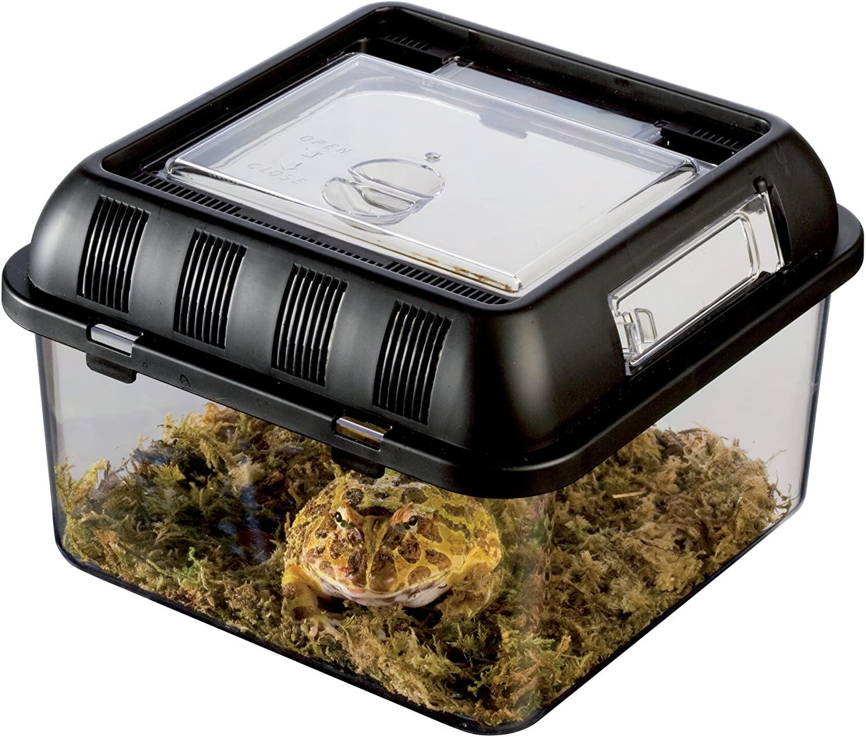 Amazon.com : Exo Terra Exo Terra Breeding Box, Small, 205 X 205 X ...