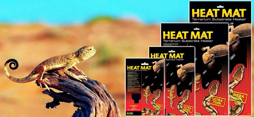 25 W Exo Terra Heat Mat Pet Supplies Reptiles & Amphibians Terrariums & Accessories Pet Supplies