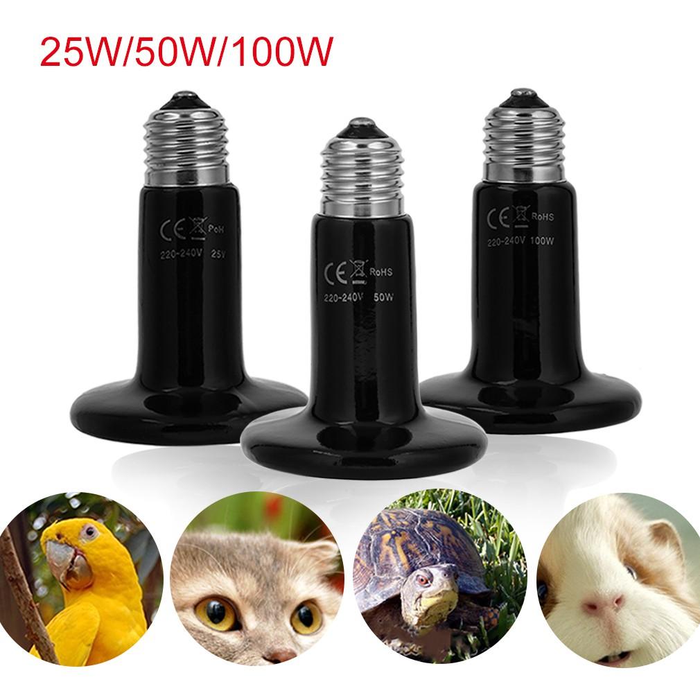🌸toymall🌸หลอดไฟให้ความร้อน 25W/50W/100W สำหรับเลี้ยงสัตว์ ...