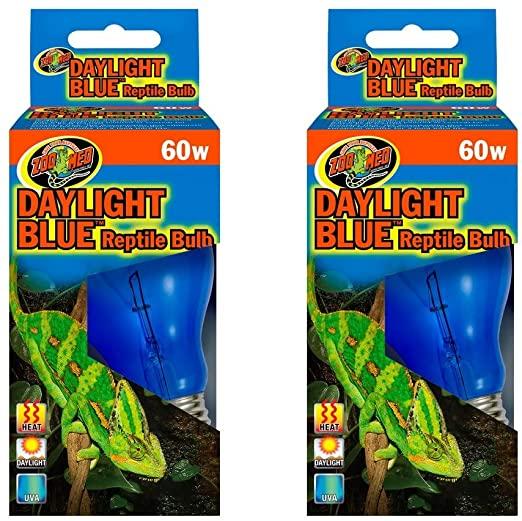 Amazon.com : Zoo Med Daylight Blue Reptile Bulb [Set of 2] Watt: 60 Watts : Pet Supplies