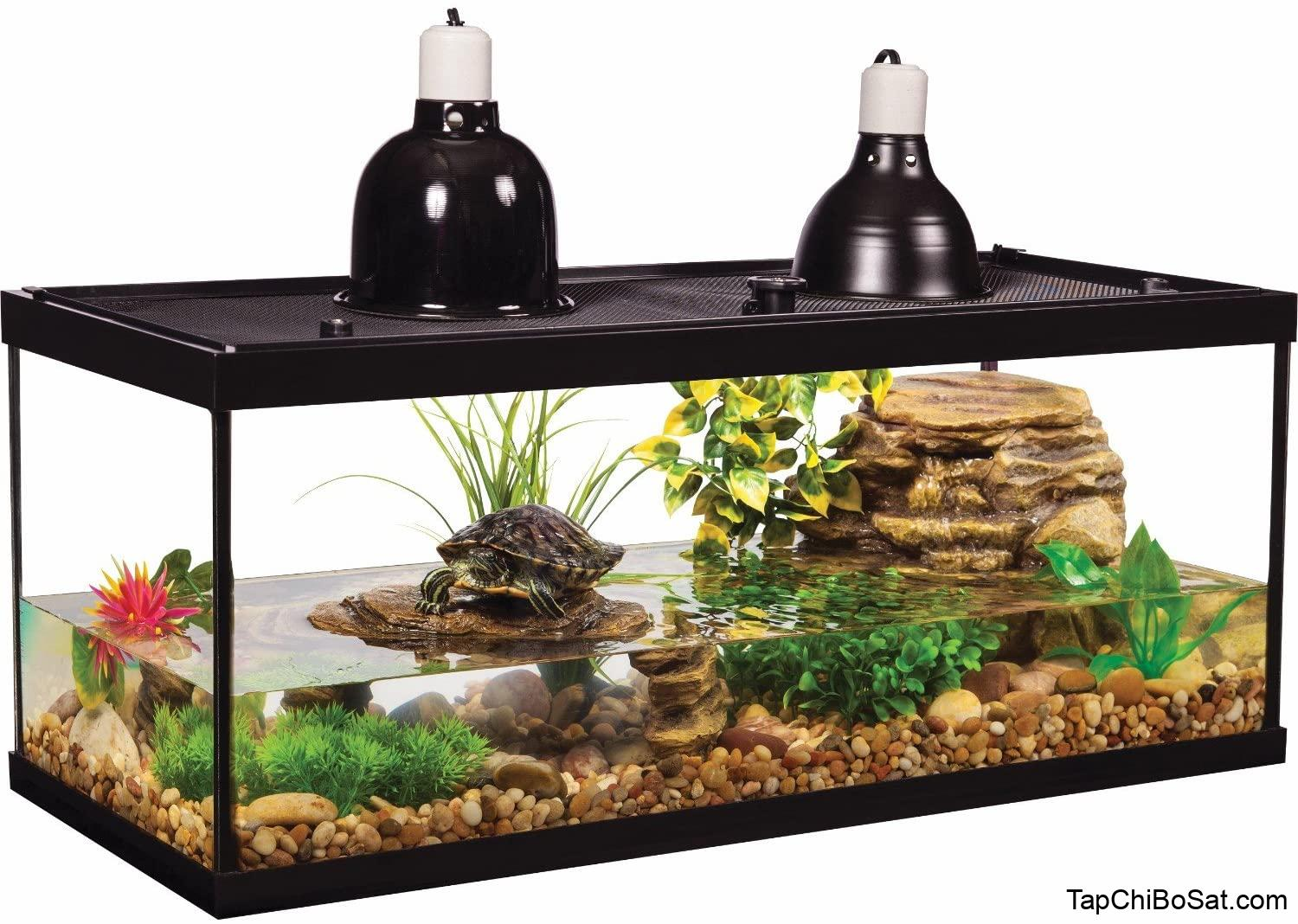Amazon.com: Tetra Aquatic Turtle Deluxe Kit 20 Gallons, aquarium With  Filter And Heating Lamps, 30 IN (NV33230): Pet Supplies