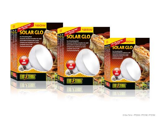 Exo Terra : Solar Glo / Sun Simulating Bulb